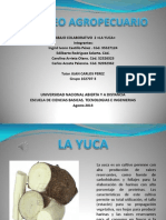 Mercadeo Agropecuario Yuca Final