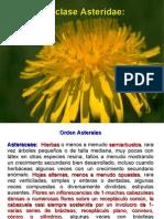 Angiospermas 10.pdf