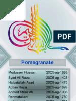 Basic Production Technology of Pomegranate