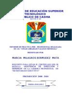 Informe Practica Preprofesional