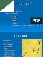 LEPTOSPIROZA (1)