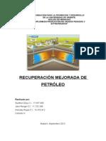 RESUMEN RECUPERACION  MEJORADA.doc
