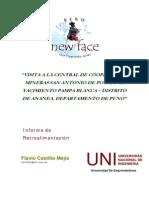t Sn Newface Informe Visita Ananea