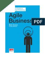 Agile Business eBook