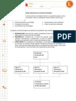Estructura Articulo Informativo