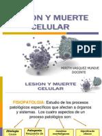 Lesion y Muerte Celular Completo Lise[1]
