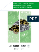 CITES - Guía de Tortugas