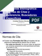 2NormasdeCitayReferenciasBuscadoresEspecificos4