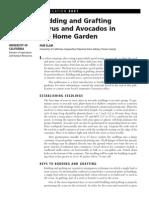 8001.pdf