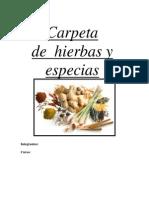 Hierbas Y Especias Importante