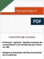 Repaso Neuropsicologia III