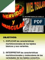 tema_tejido_nervioso_y_muscular.ppt