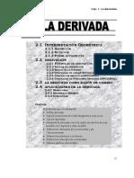 8689395-La-Derivada.pdf