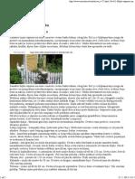 Biljke otporne na sušu.pdf