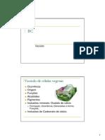 Vacuolo.pdf