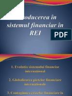 Introducerea în sistemul financiar în REI