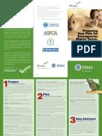 Pets Disaster Kit brochure.