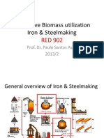 Innovative Biomass Utilization Iron & Steelmaking 02