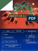 Bioodiversidad Primeras Celulas Fosiles