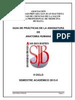 Guia p. Anatomia Humana