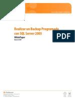 Realizar Un Backup Programado Con SQL Server 2005