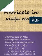 Matricele in viata reala-Minca Laurentiu.ppt