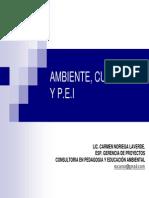 315_Presentación_PEI