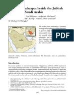 2013_Jennings_et_al_Antiquity.pdf