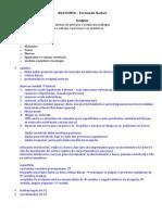 1. DORSO - Ossos e Articulações - Fernanda N.