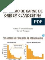 Apresentação Consumo de carne de origem clandestina.pptx