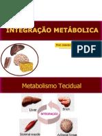 Aula 13 - Integração Metabólica
