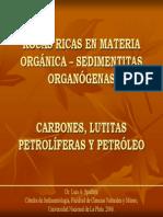 Petroleos y Carbones - Spaletti