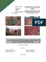 Etude diagnostic des filières maraîchères de la vallée du fleuve Niger