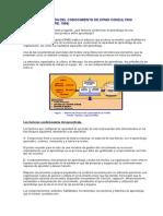 MODELO DE GESTIÓN DEL CONOCIMIENTO DE KPMG CONSULTING