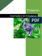 PDN_Invernadero_Arándano.pdf