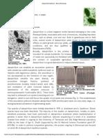 Azospirillum Lipoferum - Site Du Genoscope