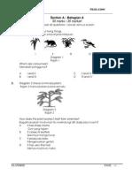 Microsoft Word Pksr 4 Science