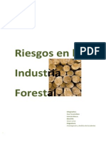 RIESGOS FORESTALES