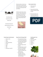 leaflet paresthesia.docx