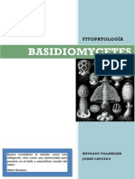 Basidiomycetes Características Generales pdf
