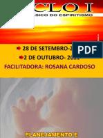 2011 09 28 CICLO I Planejamento e Processamento Reencarnatorio RosanaC