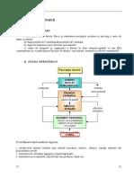 Durerea 3_REPERE FIZIOLOGICE.doc