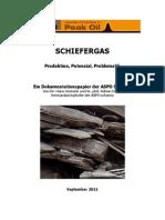 schiefergas-produktion-potenzial-problematik.pdf