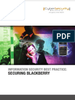Secure Your Balckberry.pdf