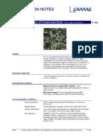 F-10a_vitex_agnus_castus_flavo HPTLC Identification of Chaste tree fruits.pdf