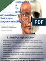 166295764-Anatomia-Chirurgicală-a-feţei