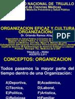 Organización eficaz y cultura organizacional
