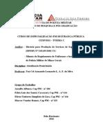 Análise da Diretriz para Produção de Serviços de - Direitos humanos revisada Arnaldo