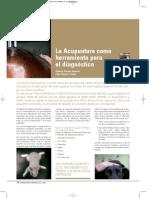 acupuntura-veterinaria