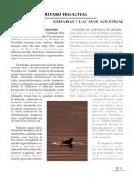 aves_acuaticas basco espanhol.pdf